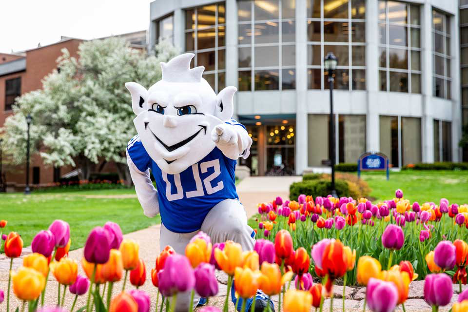 该 Billiken is waiting to welcome new students with SLU's famous tulips.